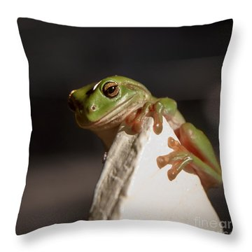 Green Tree Frog Keeping An Eye On You Throw Pillow by Peta Thames