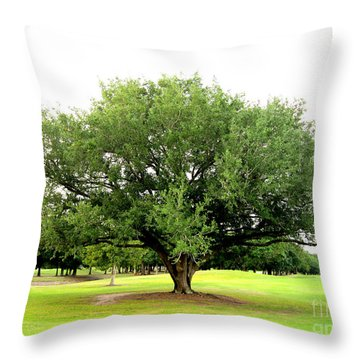 Green Tree Throw Pillow by Oksana Semenchenko
