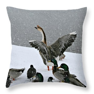 Green Valley Ducks Throw Pillow