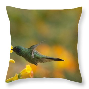 Green Violet-ear Hummingbird Throw Pillow