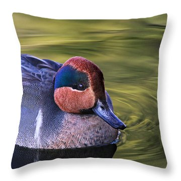 Green-winged Teal Duck Throw Pillow