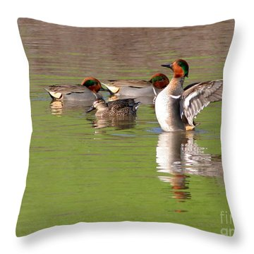 Green-winged Teals Throw Pillow