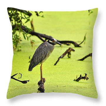 Green Yellow And Red Throw Pillow by Al Powell Photography USA