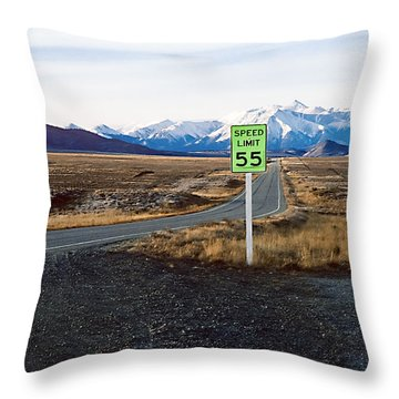 Green Zone Throw Pillow by Kellice Swaggerty