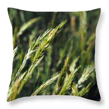 Greener Grass Throw Pillow by Kaleidoscopik Photography