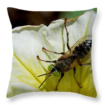 #greeneyes Throw Pillow by Becky Furgason