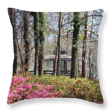 Greenfield Park And Lake Throw Pillow by Cynthia Guinn