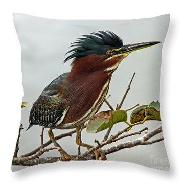 Audubon's Green Heron Throw Pillow