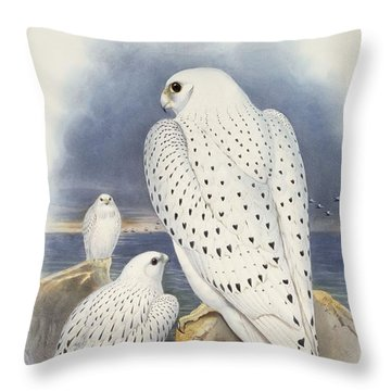 Greenland Falcon Throw Pillow