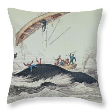 Greenland Whale Book Illustration Engraved By William Home Lizars  Throw Pillow