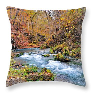 Greer Spring In Fall Throw Pillow by Marty Koch