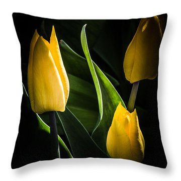 Greeting Card Throw Pillow by Michele Wright