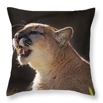 Greeting The Morning Light  Throw Pillow