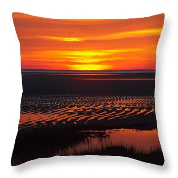 Greetings Throw Pillow by Dianne Cowen