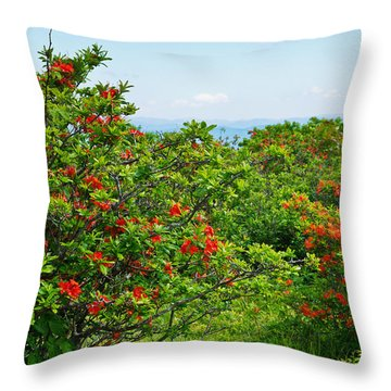 Gregory Bald Throw Pillow by Melinda Fawver