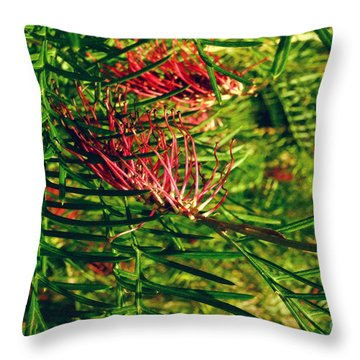 Throw Pillow featuring the photograph Grevillea Viii by Cassandra Buckley