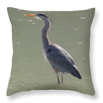 Grey Bird Throw Pillow by Oksana Semenchenko