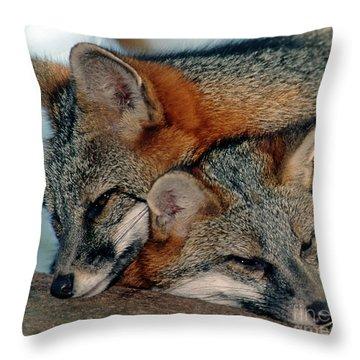 Grey Foxes Throw Pillow by Millard H. Sharp