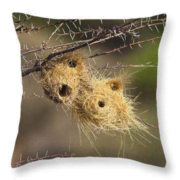 Grey-headed Social-weaver Nests Tanzania Throw Pillow by Konrad Wothe