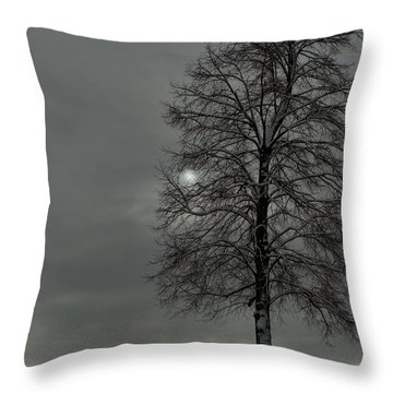Grey Morning Throw Pillow by Steven Reed