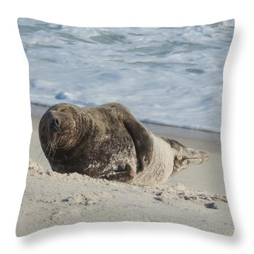 Grey Seal Pup On Beach Throw Pillow by Kimberly Perry