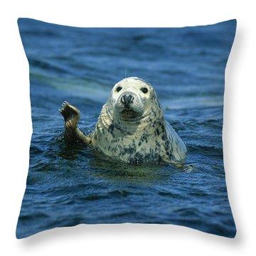 Grey Seal Waving Throw Pillow by Martin Woike