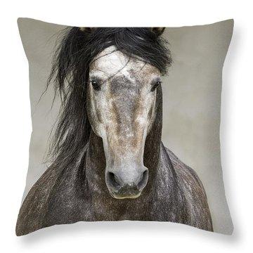 Andalusian Stallion Throw Pillows