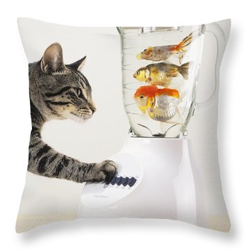 Grey Tabby Cat With Paw On Blender Throw Pillow by Thomas Kitchin & Victoria Hurst