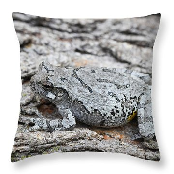 Throw Pillow featuring the photograph Cope's Gray Tree Frog by Judy Whitton