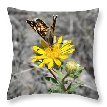 Greyed Butterfly Throw Pillow