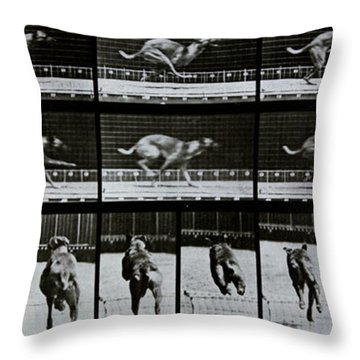 Greyhound Running Throw Pillow by Eadweard Muybridge