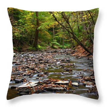 Creek Walk Throw Pillow by Richard Engelbrecht