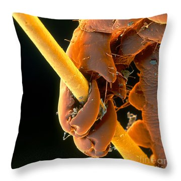 Grip Throw Pillow by Eye of Science