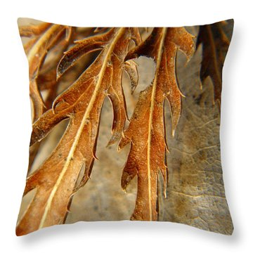Grip Of Winter Throw Pillow by Chris Berry