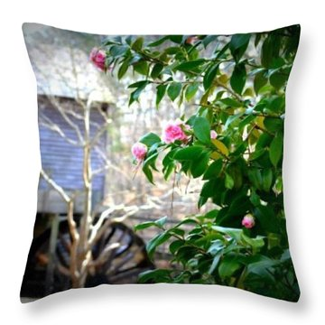Throw Pillow featuring the photograph Grist Mill Roses by Tara Potts