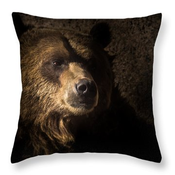 Grizzly 2 Throw Pillow
