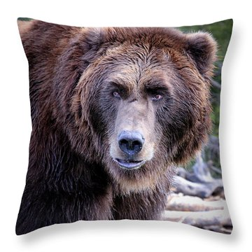 Throw Pillow featuring the photograph Grizzly by Athena Mckinzie