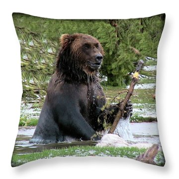 Grizzly Bear 08 Throw Pillow by Thomas Woolworth