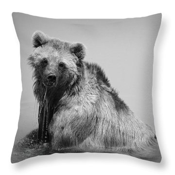 Grizzly Bear Bath Time Throw Pillow