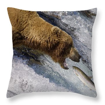 Grizzly Bear Catching Salmon Throw Pillow