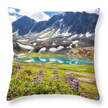 Grizzly Bear Lake Throw Pillow