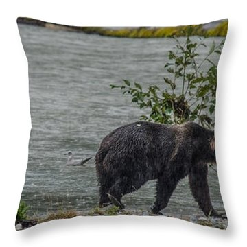 Grizzly Bear Late September 5 Throw Pillow
