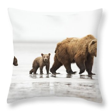Grizzly Bear Mother And Cubs Lake Clark Throw Pillow