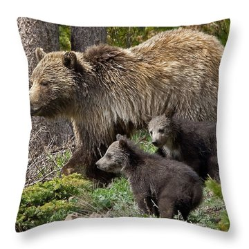 Grizzly Bear With Cubs Throw Pillow by Jack Bell