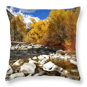 Throw Pillow featuring the photograph Grizzly Creek Canyon by Jeremy Rhoades