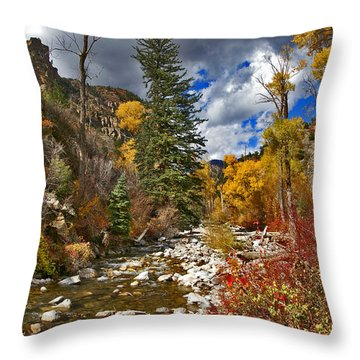 Throw Pillow featuring the photograph Grizzly Creek Vertical by Jeremy Rhoades