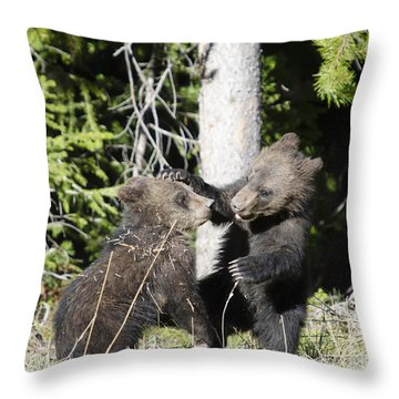 Grizzly Cubs Playing Throw Pillow