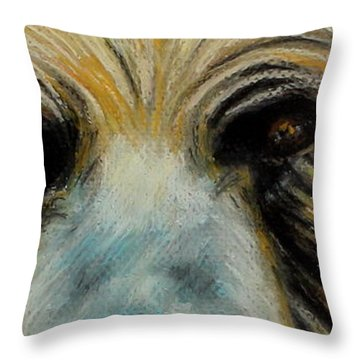 Grizzly Eyes Throw Pillow