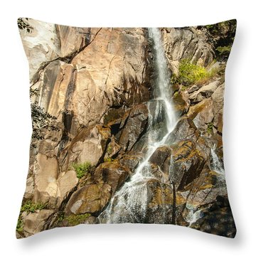 Grizzly Falls 1-7773 Throw Pillow
