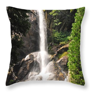 Grizzly Falls Throw Pillow by Mary Carol Story